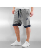 Lonsdale London Shorts Blackmoor grau