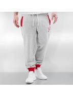 LRG Спортивные брюки Research Collectio серый