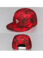 LRG 5 Panel Caps Camo rood