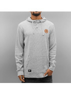 LRG Hoody 1947th Edition grau