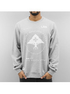 LRG Pullover Research Collection grau