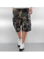 LRG Shorts Research Collection camouflage