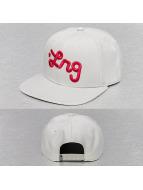 LRG Snapback Cap Logo grau