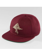 LRG Snapback Cap Collection red