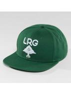 LRG Snapback Research Group zelená