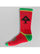 LRG Socken RC Stripe Crew rot
