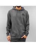 LRG Sweat à capuche One Icon gris