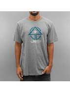 LRG T-Shirt LR Growth gris