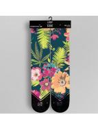 LUF SOX Socken Tropic bunt