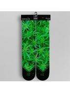 LUF SOX Socken Ganja grün