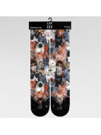 LUF SOX Socks Classics Meow colored