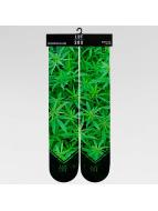 LUF SOX Socks Classics Ganja green