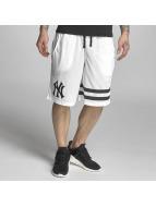 Majestic Athletic Shorts Poly Band grigio