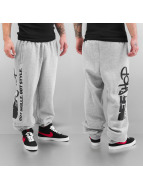 Merchandise Спортивные брюки DefShop Got Skillz Got Style серый