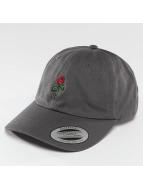 Mister Tee Snapback Cap Rose Dad grigio