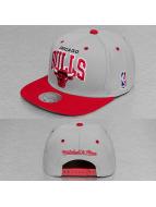 Mitchell & Ness Snapback Team Arch 2 Tone Chicago Bulls šedá