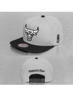 Mitchell & Ness Snapback Cap Black And White Mono Chicago Bulls grau