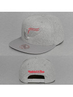 Mitchell & Ness Snapback Cap Waffle Detroit Red Wings grau