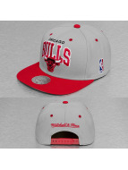Mitchell & Ness Snapback Cap Team Arch 2 Tone Chicago Bulls grey