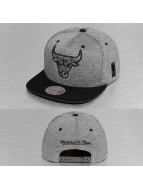 Mitchell & Ness Snapback Caps Broad Chicago Bulls grå