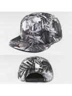 Mitchell & Ness Snapback Caps OB grå