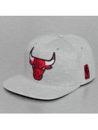 Mitchell & Ness Snapback Caps Sweat Chicago Bulls harmaa
