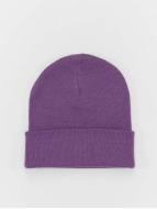 MSTRDS Pipot Basic Flap purpuranpunainen
