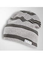 NEFF Beanie Daily Stripe grey