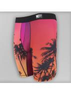 NEFF Boxer Short Stealth Underwear colored
