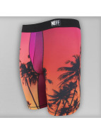 NEFF Boxerky Stealth Underwear pestrá