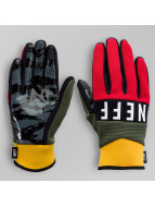 NEFF Handschuhe Ripper bunt