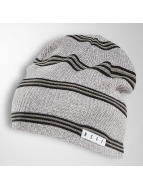 NEFF Hat-1 Daily Stripe gray