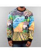 NEFF Pullover Amigo multicolore