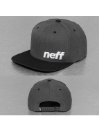 NEFF Snapback Cap Daily grigio