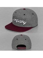 NEFF snapback cap The Company grijs