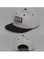 NEFF snapback cap New World grijs