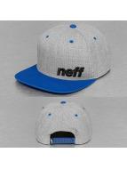 NEFF snapback cap Daily grijs