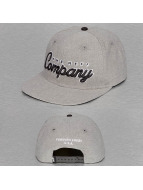 NEFF Snapback Caps Company szary