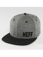 NEFF Snapback Caps Daily Fabric szary