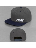 NEFF Snapback Daily gris