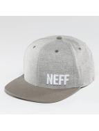 NEFF Snapback Daily gris