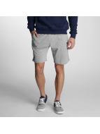 New Era Shorts Team App LA Dodgers grau