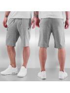 New Era shorts MLB NY Yankees Jersey grijs