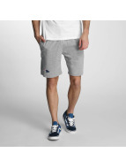 New Era Shorts Team App New England Patriots gris