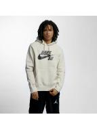 Nike SB Bluzy z kapturem SB Icon bezowy