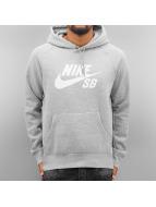 Nike SB Hoodie Icon gray