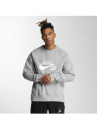 Nike SB Pullover Icon Top grau