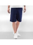 Nike SB shorts SB Everett blauw