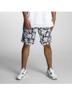 Nike SB Shorts Dry noir