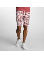 Nike SB Shorts SB Dry red